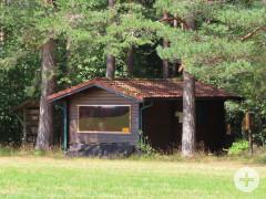 Der Lehrbienenstand steht am Wald-/Wiesenrand unter hohen Nadelbäumen.