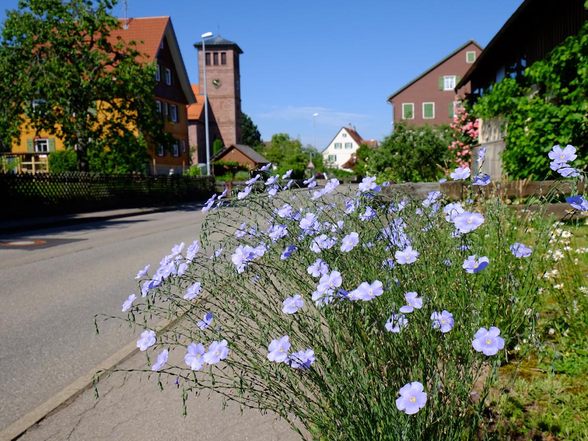 Ortsdurchfahrt in Zwerenberg mit Blick auf die Kirche.