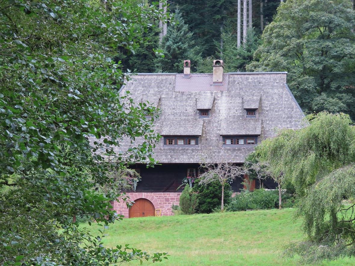 Bach mit Haus und Wald im Hintergrund