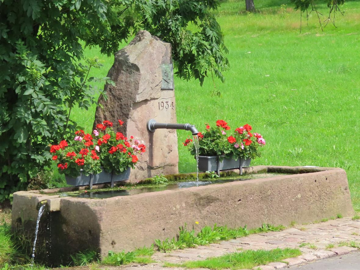 Rechteckiger Steinbrunnen auf der grünen Wiese mit einem Baum im Hintergrund